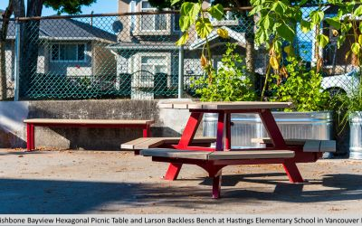 Wishbone Bayview Hexagonal Picnic Table and Larson Backless Bench at Hastings Elementary School in Vancouver BC
